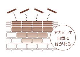 低周ペンシルのシミ排出メカニズム2